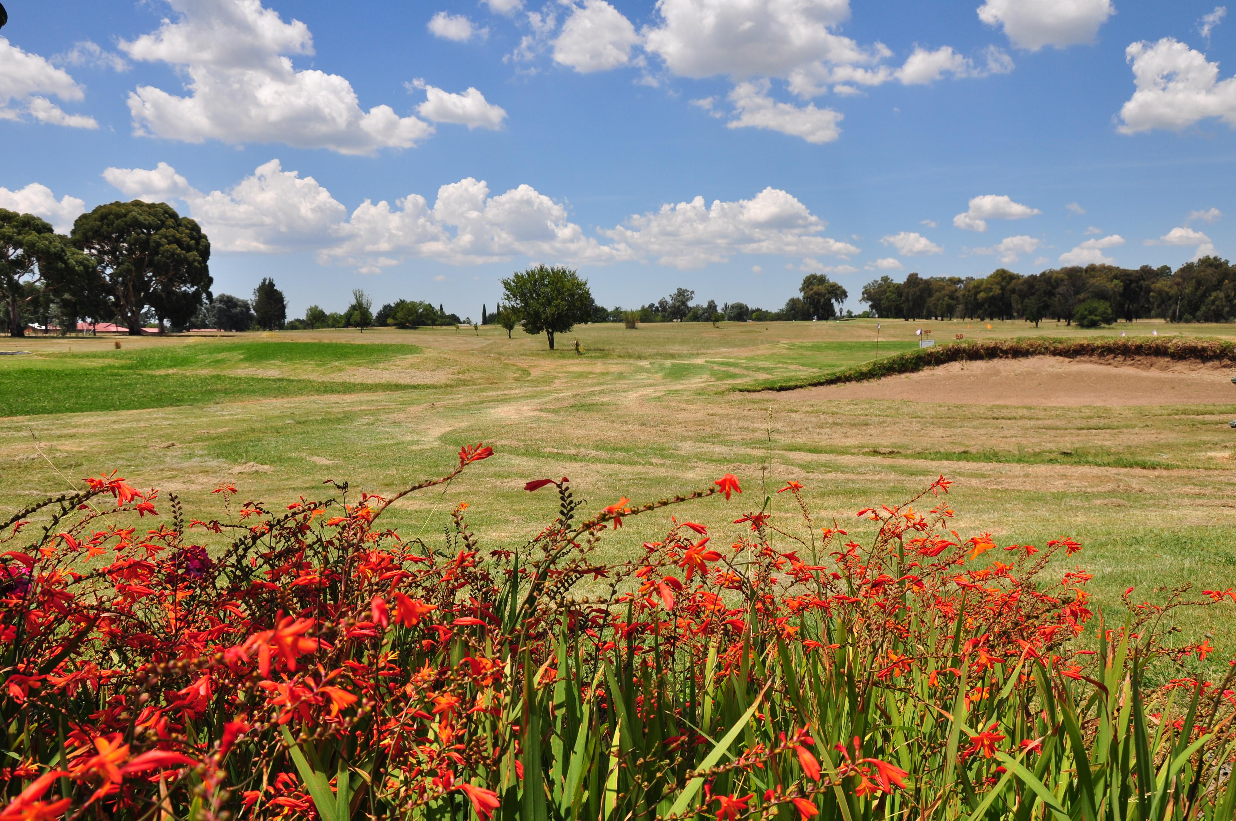 Bethal Golf Club