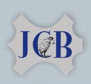 JCB Leathers